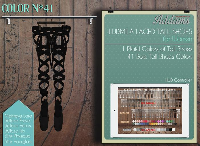 "Addams ""Ludmila"" Mesh Laced Tall Shoes -Maitreya, Belleza, Slink #41"