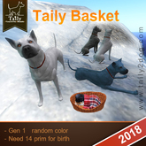 Taily Basket Gen 1  :  random