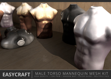 EASYCRAFT - Full Perm (PRIME) Male Torso Mannequin