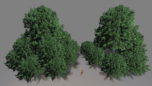 """1 prim full perm """"Forest/Trees Group"""" sculpt maps, any plant texture"""