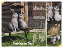 Rabbits in Love ♥ CHEZ MOI