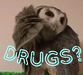 Drugs owl2