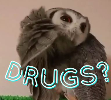 Drugs Owl