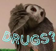 Drugs Owl Gestures