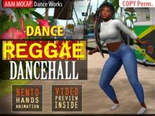 A&M MOCAP - Reggae DanceHall - DANCE SOLO (transfer)
