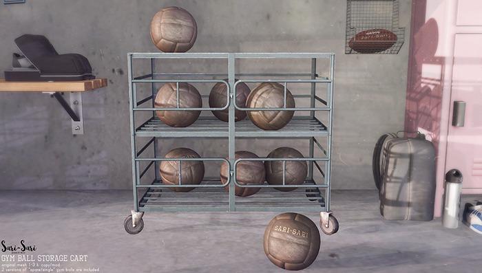 Sari-Sari - Gym Ball Storage Cart