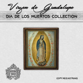 Vintage Touch Virgin of Guadalupe Frame