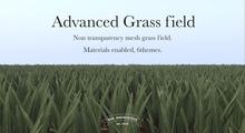 [sau]Advanced Grass field