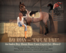 "The Painted Pony~ ""Cafe Au Lait"" Bay Roan Coat for *WH* Riding Horse"