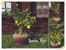 Lemon Tree ♥ CHEZ MOI