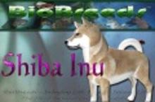 BioBreeds (BB) Dog FEMALE Shiba STARTER (Boxed)