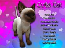 Cutie Cat Siamese Animated Mesh