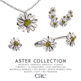 Cae :: Aster :: Collection [bagged]