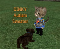 Dinkie Autism Sweater Boxed