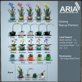 ARIA] Oolong Teacup Planter Vanda Orchid- White