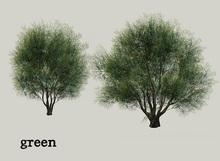 HPMD* Garden Tree08 - green