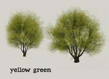 HPMD* Garden Tree08 - yellowgreen