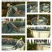 satus inc  backyard swimming pool sample poses