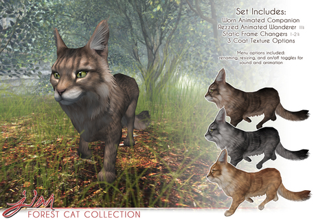 JIAN Forest Cat Collection