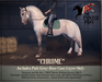 """The Painted Pony~ """"Chrome"""" Gray Coat for *WH* Riding Horse"""