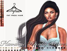 *dafnis fat pack hair  -  Havana Windy Breeze