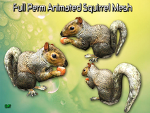 Full Perm Amazing Animated Squirrel HQ Mesh