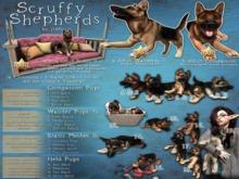 JIAN Scruffy Shepherds BOX 1. Hanging Buddy Couch RARE