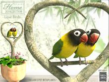 Love, Birds