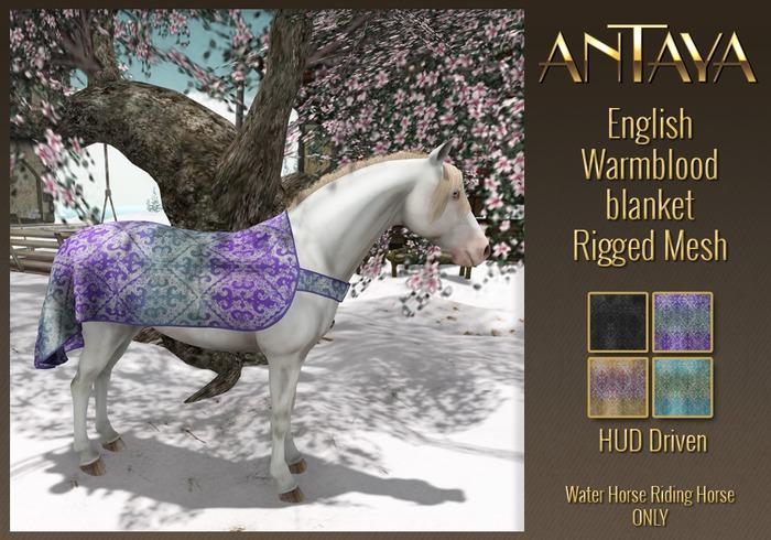 :: ANTAYA :: WHRH English Warmblood blanket