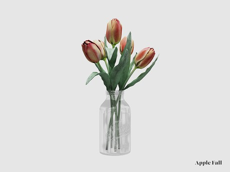 Apple Fall Nardyas' Tulips in Mason Jar (Box)