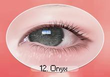chouette :: sparkling eyes / 12 onyx