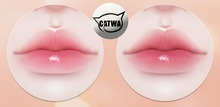 chouette :: honey melted lips applier (catwa)