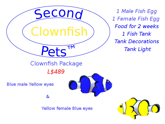 Two Clownfish Eggs Blue & Yellow