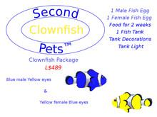 Two Clownfish Eggs Blue & Yellow