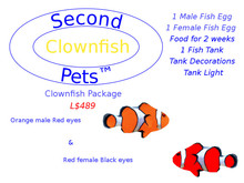 Two Clownfish Eggs Orange & Red
