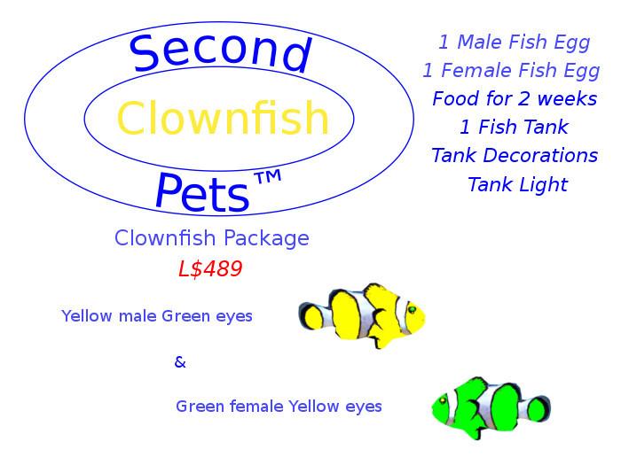 Two Clownfish Eggs Yellow & Green
