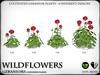Heart   wildflowers   geraniums   ref1