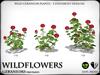 Heart   wildflowers   geraniums   ref2