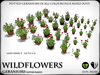 Heart   wildflowers   geraniums   ref4
