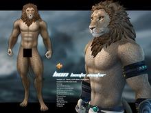 JOMO Male Lion A