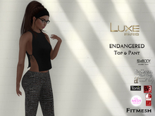 LUXE Paris ENDANGERED Top and Pant