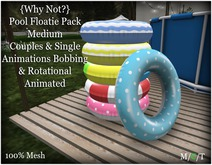 {Why Not?} Pool Floatie Pack Medium-Boxed