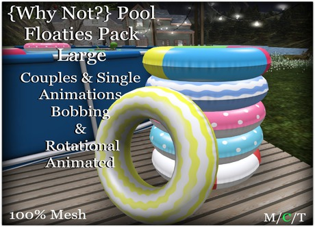 {Why Not?} Pool Floaties Pack Large-Boxed