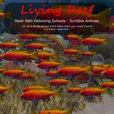 Inochi Reef - Mesh Scribble Anthias School