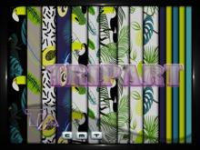 {TripArt} Tropical Toucan Set 7