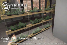 [ Organica ] Hanging Bamboo Herb Planter (sage and rosemary)