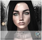 .Viki. Fosfia Head Shape DEMO - Genus BENTO