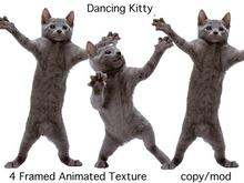 Dancing Kitty - Animated Cat