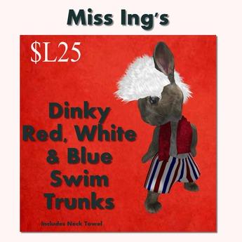 Miss Ing's  Dinkie RWB Swim Trunks Set