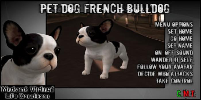PET DOG French Bulldog